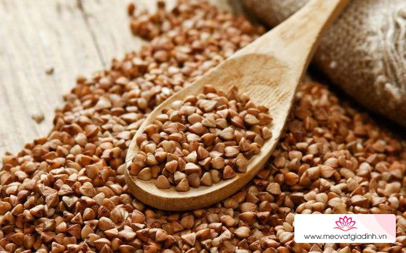 Kiều mạch - Ngũ cốc nguyên hạt